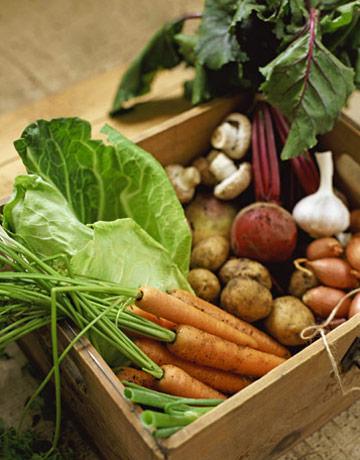 Organic-vegetables-lg2