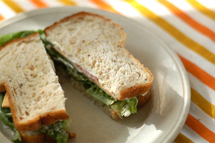 AMD_Tofurkey-Sandwich