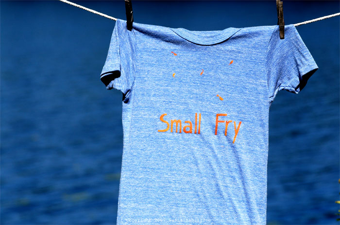 ND_Small-Fry_