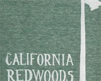 Sd_CA-Redwoods-design