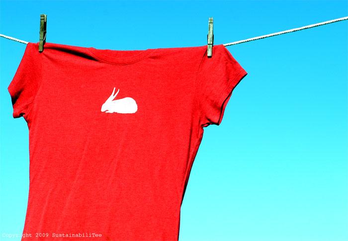 ND_White-Rabbit
