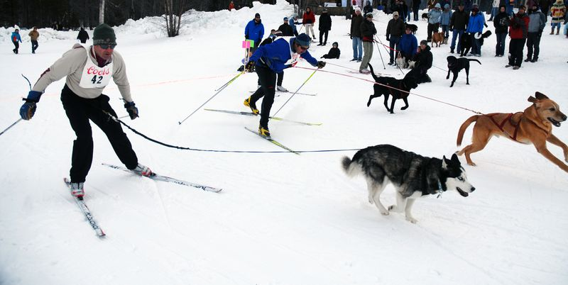 2-23-11-dogging-skijoring-6